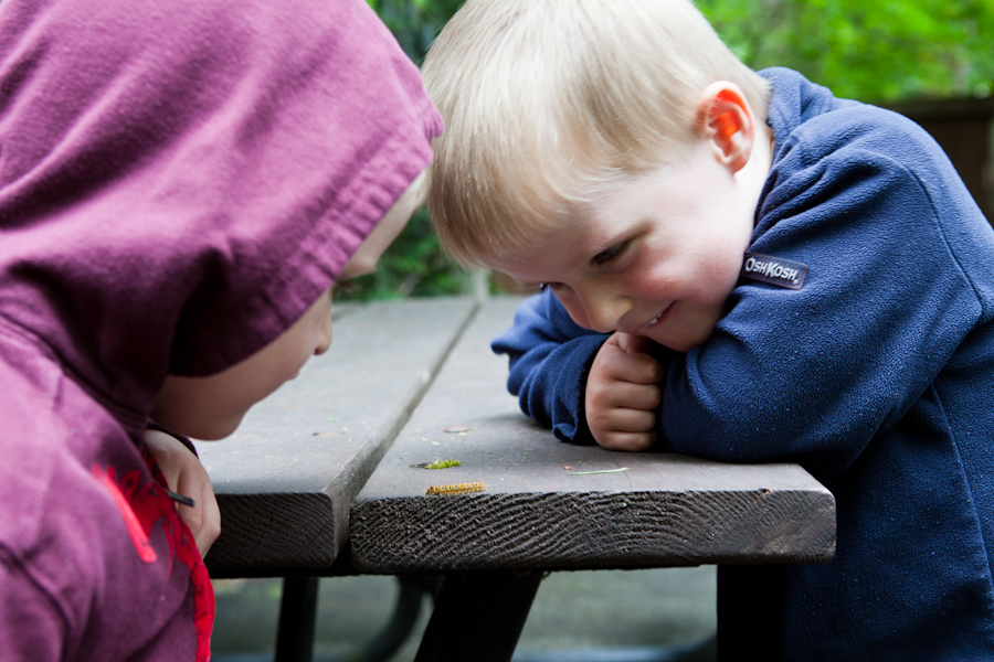 Will and Andrew watch a caterpillar at Northwest Trek