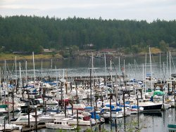 Day 11: Friday Harbor on San Juan Island