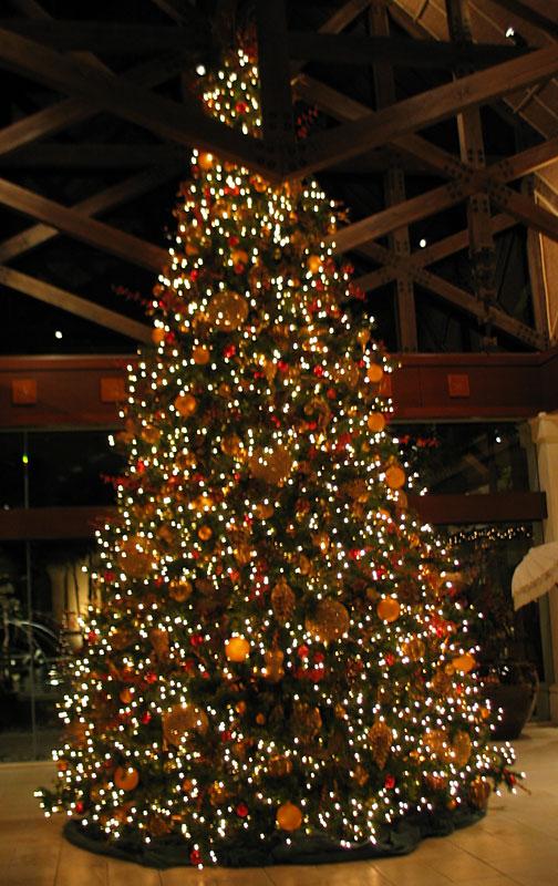 Christmas Trees Hobby Lobby
