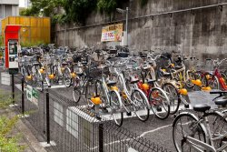 Bike parking next to the sumo arena