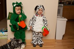 Will the dragon and Andy the dalmatian 3