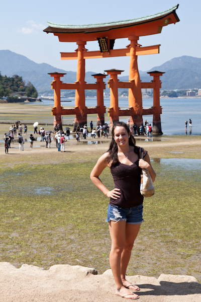 Tori in front of the torii