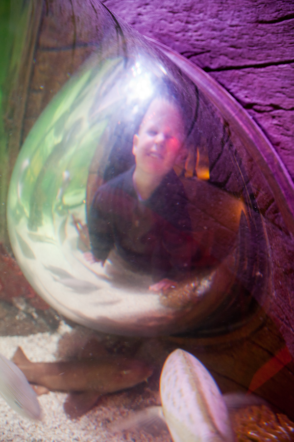 Andrew in a bubble